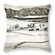 The Long View Throw Pillow