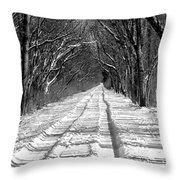 The Long Winter Walk Throw Pillow