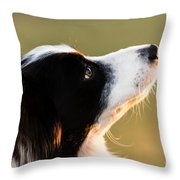 The Look Of A Dog Throw Pillow