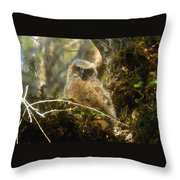 The Look Of Innocence Throw Pillow