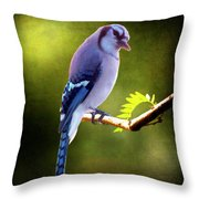 The Look Of Love Throw Pillow