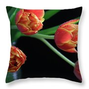 The Look Out Throw Pillow by Tracy Hall