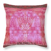 The Lord's Light Is The Man 's Soul Throw Pillow