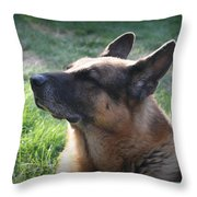 The Love Of An Old Dog Throw Pillow