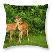 The Love Of Siblings Throw Pillow