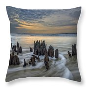 The Lowcountry - Botany Bay Plantation Throw Pillow