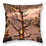 The Lurker II Throw Pillow