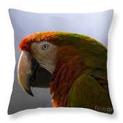 The Macaw Portrait Throw Pillow
