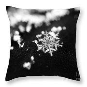 The Magic In A Snowflake Throw Pillow