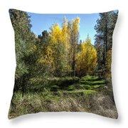 The Magic Of Fall Throw Pillow