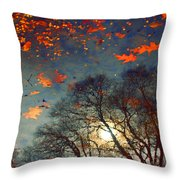 The Magic Puddle Throw Pillow