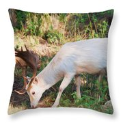 The Magical Deer Throw Pillow