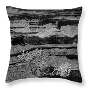 The Magnificent Grand Canyon Throw Pillow