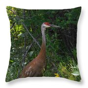 The Male Throw Pillow