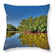 The Mangrove Coast Throw Pillow