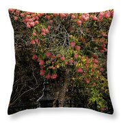 The Manor Gate Throw Pillow