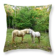 The Mares Watch Throw Pillow