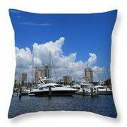 The Marina Throw Pillow