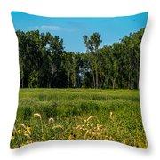 The Marsh  Throw Pillow