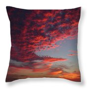 The Master Painter Throw Pillow