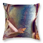 The Master's Brush 2 Throw Pillow
