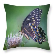 The Mattamuskeet Butterfly Throw Pillow by Cindy Lark Hartman