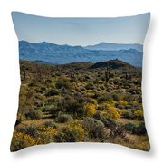 The Mcdowell Mountains Throw Pillow