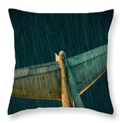 The Metal Whales Tale Throw Pillow