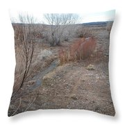 The Mighty Santa Fe River Throw Pillow