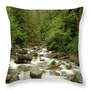 The Miller River  Throw Pillow