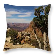 The Miracle Of Nature Throw Pillow