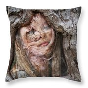 The Mirror Of Old Age Throw Pillow