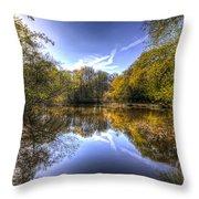 The Mirror Pond Throw Pillow