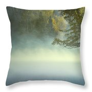 The Mists Of Hunt Lake Throw Pillow by Stuart Deacon