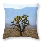 The Mojave Desert Throw Pillow