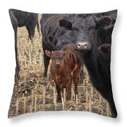 The Moms And Me Throw Pillow