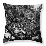 The Monastery Tree Throw Pillow