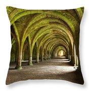 The Monks Cellarium, Fountains Abbey.  Throw Pillow