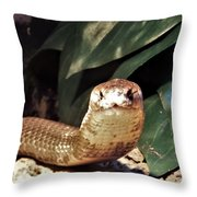 The Monocled Cobra Throw Pillow