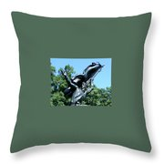 The Monument To The Soldiers And Sailors Of The Confederacy Throw Pillow