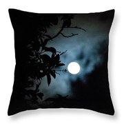 The Moon - La Luna 12 Throw Pillow