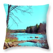 The Moose River At Lyonsdale Throw Pillow