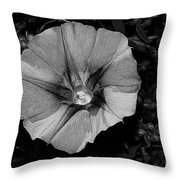 The Morning In Glory Throw Pillow