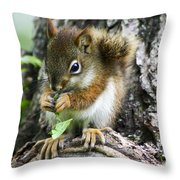 The Most Adorable Baby Squirrel Throw Pillow