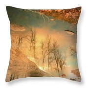 The Movement Of Ice 2 Throw Pillow