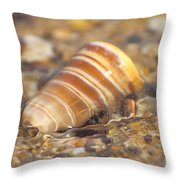 The Moving Tide Throw Pillow