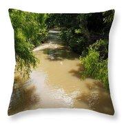 The Muddy Medina Throw Pillow