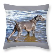 The Muddy Mississippi Throw Pillow
