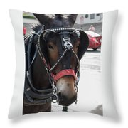 The Mule That Poses Throw Pillow