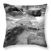 The Musc Of Water Throw Pillow